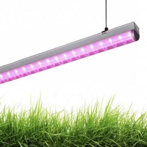 Фитосветильник для растений светодиодный СПБ Т8 ФИТО 15 Вт линейный