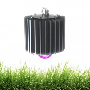 Фитосветильник светодиодный полного спектра 50 Вт ПСС-ФИТО IP65