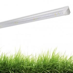 Светильник для растений светодиодный ЛУЧОК 30 Вт 600мм Линейный