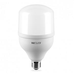 Светодиодная лампа 30W 220V E27-E40 LED 25WHP30E27/40 6500К